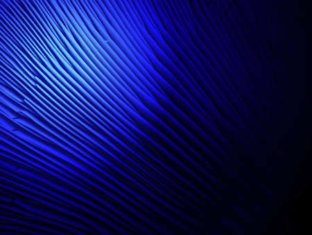 lamellar: abstract blue light over lamellar fungus surface, unknown science detsils Stock Photo