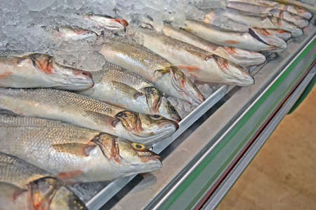 fresh fish with silver scales and flippers under cold ice, food refrigerating details photo