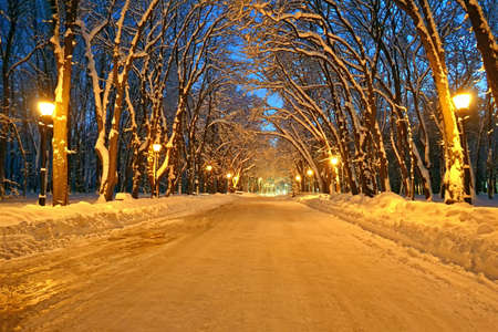 night illumination on the winter alley, power details photo