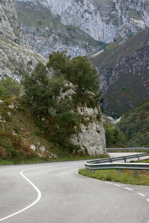 mountain s-bend  Stock Photo - 2528874