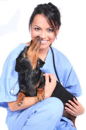 cna: L'assistenza sanitaria dei lavoratori di sesso femminile o veterinario col cane  Archivio Fotografico