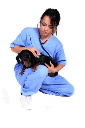 cna: Trabajador o veterinario femenino de Healthcare con el perro