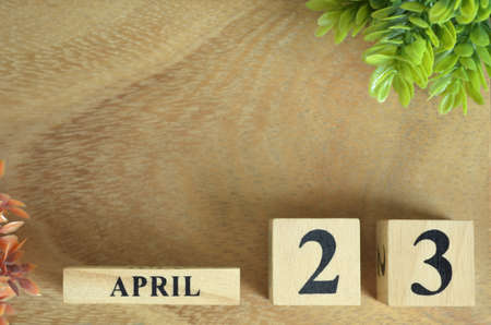 April 23, Number cube design in the natural concept.