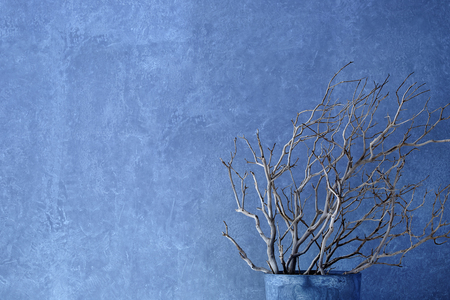 white wooden branches in vase in front of concrete wall