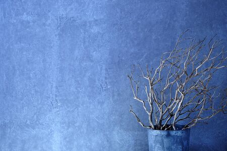interior walls: modenr decoration concrete wall with branches in vase
