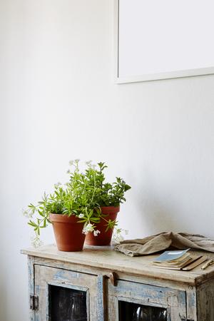 vintage wooden cabinet in white kitchen Banco de Imagens