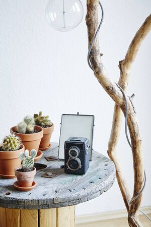 coffee table decoration cacti and vintage camera on cable drum upcycling ideas Stock Photo