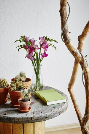urban side table variety of cacti and upcycling ideas