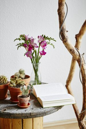 vintage hygge design side table with cacti and flowers in living room