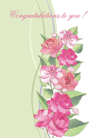 illustration. Beautiful greeting card with blooming balsam flowers