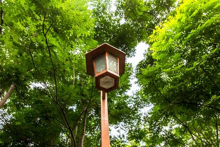 lamp post: Lamp post in a park