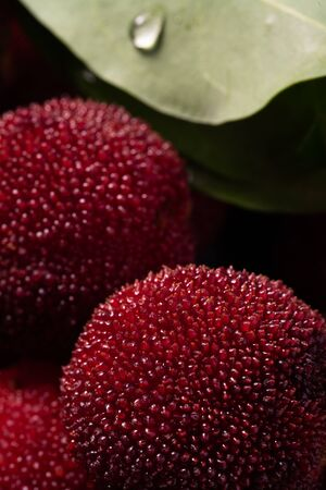 Chinese bayberries close-up