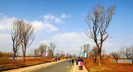 kunming: Kunming Editorial