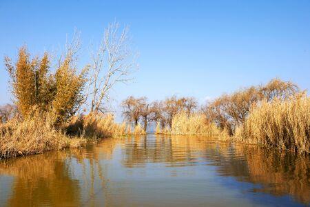kunming: Wetland in Kunming Stock Photo