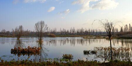 Wetland in Kunming Stock Photo