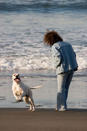girl an gog playing in the beach