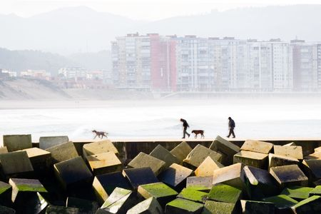 two men and their dogs taking a walk by the levee, with the sea and buildings to the bottom photo