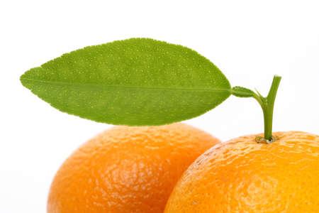 Sinaasappelen tegen Wit