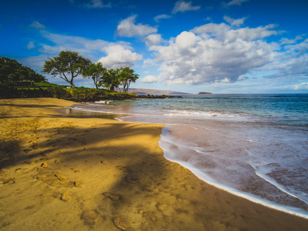 Calm waves at Maluaka Beach on a sunny day with shadows of palm trees cast onto the sand, Maui, Hawaii