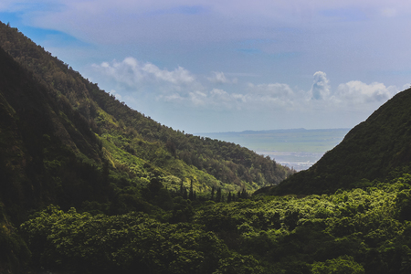 Beautiful elevated view of lush green Iao Valley with seascape in the distance, Iao Valley State Park, Wailuku, Maui, Hawaii Фото со стока - 110841234