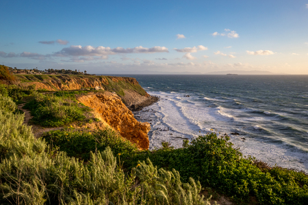 Beautiful grass blowing in the wind atop the tall bluffs of Point Vicente with waves crashing into the rocky shore below, Rancho Palos Verdes, California Imagens