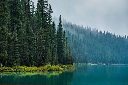 Dense forest surrounding Lake Louise along the Lake Louise Lakeshore Trail on a foggy day with reflections in the turquoise-colored water, Banff National Park, Alberta, Canada