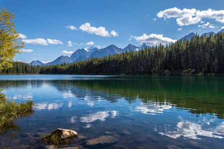 Calm blue water of Herbert Lake with reflections of trees, clouds, and the Canadian Rockies, Banff National Park, Alberta, Canada Фото со стока