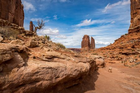 Stunning view of The Organ sandstone structure in the distance seen from the Park Avenue Trail, Arches National Park, Moab, Utah