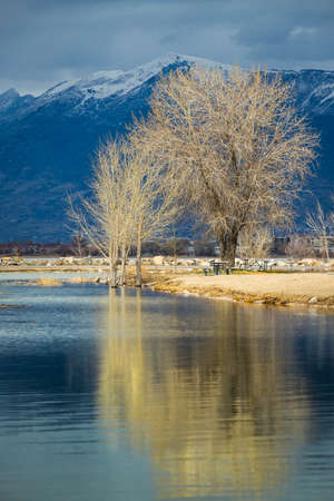 Trees reflecting off of the calm Utah Lake on an overcast day with snowcapped mountains in the distance, Utah Lake State Park, Provo, Utah