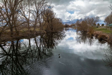 Two ducks swimming in the peaceful Provo River with the sky reflecting in the water, Utah Lake State Park, Provo, Utah 版權商用圖片