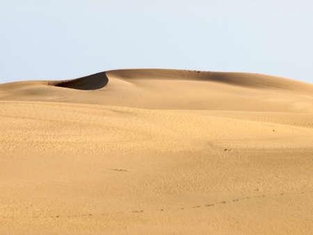 dune: Desert Dune