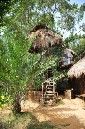 treehouse photo