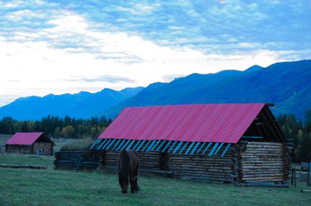 Baihaba Village, Xinjiang Stock Photo