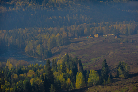 Baihaba Village forest farm, Xinjiang