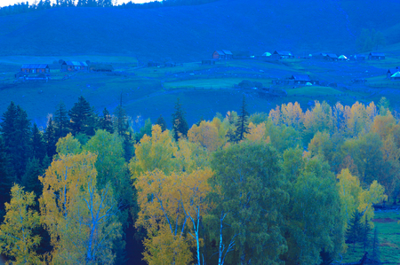Baihaba Village, Xinjiang 免版税图像