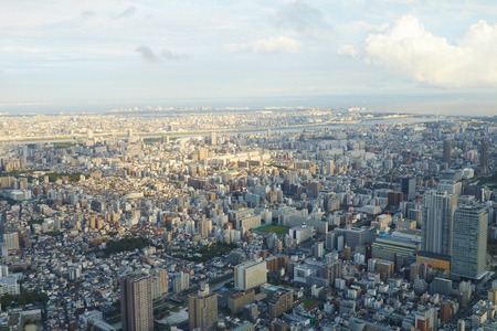 residential: Japan Tokyo cityscape, commercial and residential building, road aerial view Editorial