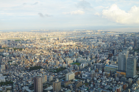 residential: Japan Tokyo cityscape, commercial and residential building, road aerial from top view
