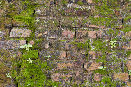 red wall: Red brick wall background. Stock Photo