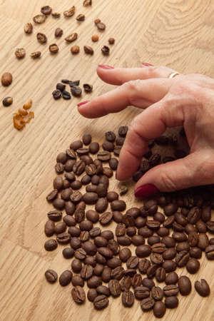 sorting: sorting coffee beans
