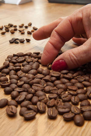 sorting: sorting coffee beans (close-up) Stock Photo