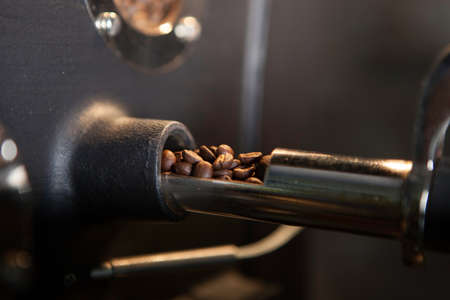verifying coffee beans (close-up)