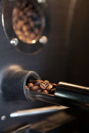 verifying: verifying coffee beans (close-up)