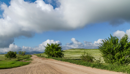 Steppe road to the clouds on the horizon, runs through chamomile field Stock Photo