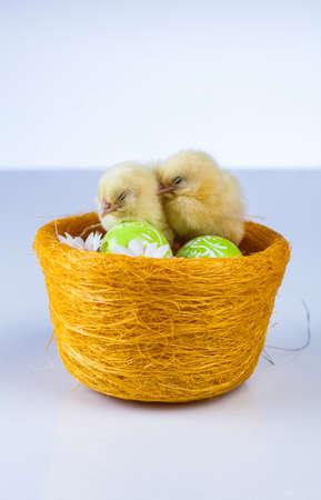 Ostern, Ei, Huhn, Kaninchen, Häschen Standard-Bild - 26100869
