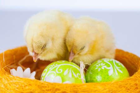Ostern, Ei, Huhn, Kaninchen, Häschen Standard-Bild - 26100872
