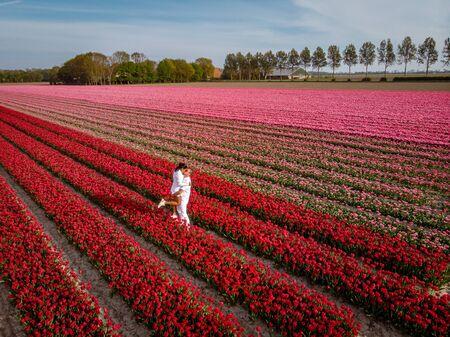 couple men and woman in flower field in the Netherlands during Spring, orange red tulips field near Noordoostpolder Flevoland Netherlands, men and woman in Spring evening sun