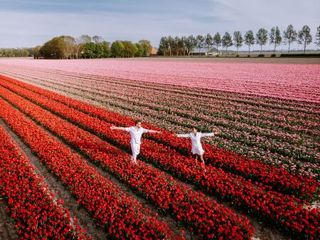 couple men and woman in flower field in the Netherlands during Spring, orange red tulips field near Noordoostpolder Flevoland Netherlands, men and woman in Spring evening sun