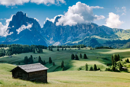 Alpe di Siusi - Seiser Alm with Sassolungo - Langkofel mountain group in background at sunset. Yellow spring flowers and wooden chalets in Dolomites, Trentino Alto Adige, South Tyrol, Italy, Europe. Summer weather with dark clouds rain Archivio Fotografico