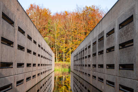 Concrete blocks in the Waterloopbos Vollenhove Flevoland Netherlands, Used to test the way water reacts to certain builds. Autumn in the forest Holland