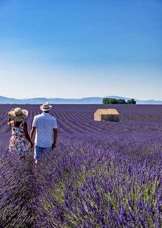 Provence, Lavender field at sunset, Valensole Plateau Provence France blooming lavender fields. Europe, couple men and woman mid age visiting the blooming lavender fields in the Provence France near Valensole